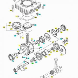 Drive shaft - Cylinder