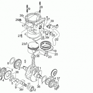 Drive shaft - Cylinder - Piston T